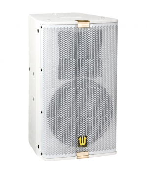 Two frequency division multipurpose full frequency speaker