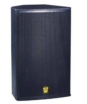 Full frequency 10 inch speaker